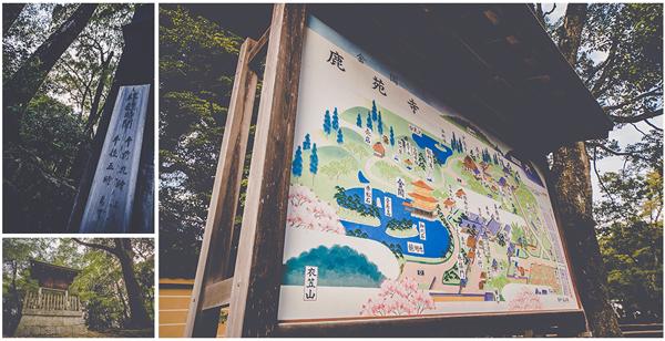 Kinkaku-ji-MTP